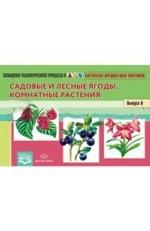 Картотека предметных картинок. Наглядный дидактический материал. Выпуск 6. Садовые и лесные ягоды