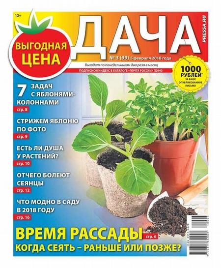 Дача Pressa.ru 03-2018
