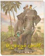 Из жизни слонов: рассказы русских писателей