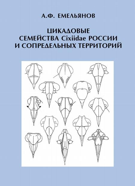 Цикадовые семейства Cixiidae России и сопредельных территорий