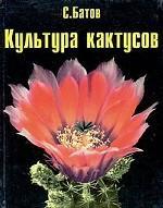 Культура кактусов