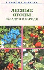 Лесные ягоды в саду и огороде