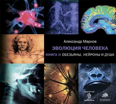 Обезьяны, нейроны и душа