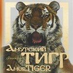 Амурский тигр: фотоальбом