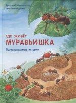 Где живёт муравьишка. Познавательные истории