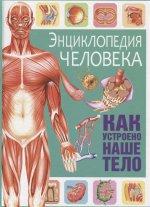 Энциклопедия человека. Как устроено наше тело
