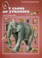 От слона до утконоса