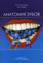 Анатомия зубов. 2-е изд., испр. и доп