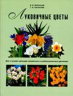 Луковичные цветы. Все о лучших цветущих луковичных и клубнелуковичных растениях
