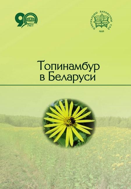 Топинамбур в Беларуси