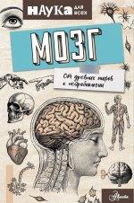 Мозг. От древних мифов к нейробиологии