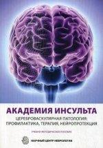 Академия Инсульта. Цереброваскулярная патология: профилактика, терапия, нейропротекция. Учебно-методическое пособие. Альманах №4
