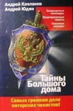 Скачать Тайны Большого дома бесплатно А. Копланов,А. Юдин