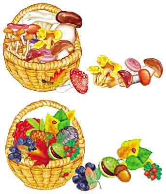 Собери корзинку с грибами и дарами осени. Комплект картинок