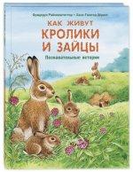Как живут кролики и зайцы. Познавательные истории