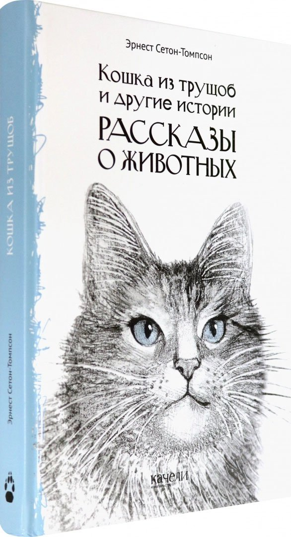 Кошка из трущоб и другие истории. Рассказы о животных
