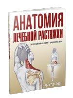 Анатомия лечебной растяжки. Быстрое избавление от боли и профилактика травм