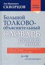 Большой толково-объяснительный словарь русского языка. В двух томах