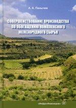Анатолий Панычев: Совершенствование производства по обогащению комплексного железорудного сырья