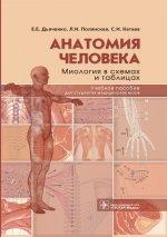 Анатомия человека. Миология в схемах и таблицах