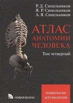 Атлас анатомии человека. Том четвертый