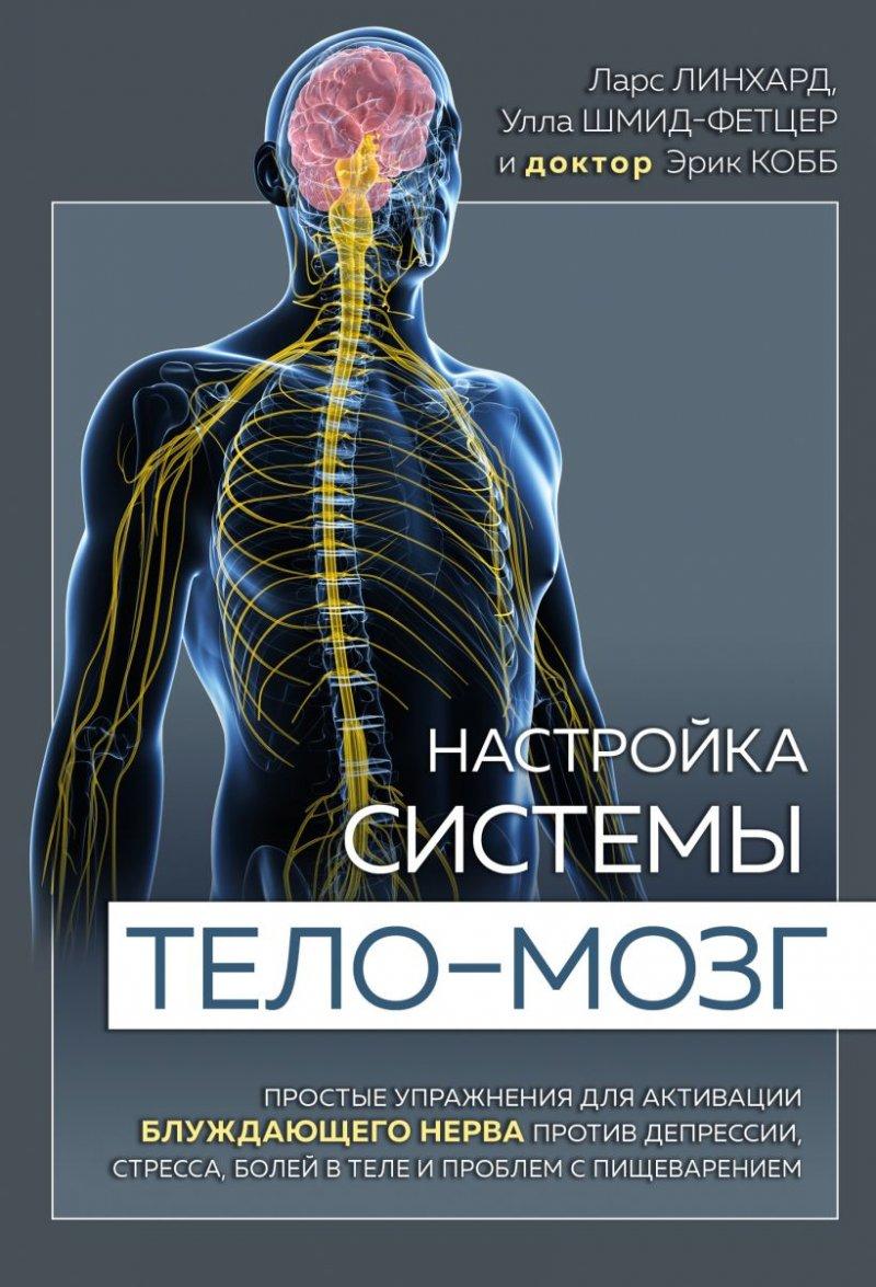 Настройка системы тело—мозг