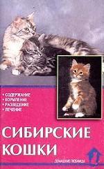 Сибирские кошки. Стандарты. Содержание. Разведение. Профилактика заболеваний