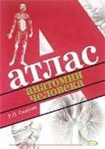 Атлас анатомии человека. Справочное издание