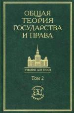 Общая теория государства и права. Академический курс. Том 2