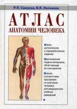 Атлас анатомии человека (миньон). 5-е издание