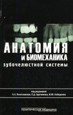 Анатомия и биомеханика зубочелюстной системы