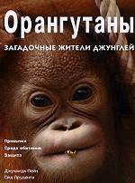 Орангутаны. Загадочные жители джунглей