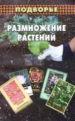 Размножение растений: подбор семян, рассада, черенкование