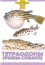 Скачать Тетраодоны  рыбы-собаки бесплатно