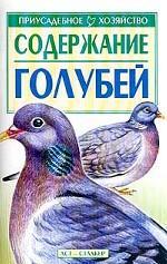 Содержание голубей