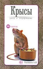 Крысы. Уход и содержание