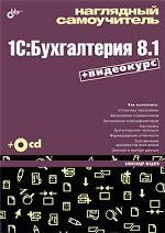 Наглядный самоучитель 1C. Бухгалтерия 8.1 (+DVD)