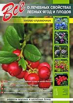 Все о лечебных свойствах лесных ягод и плодов