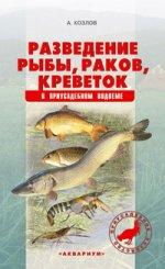 Разведение рыбы, раков,креветок в приусадебном водоеме