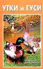 Утки и гуси