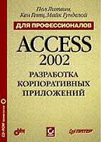 Разработка корпоративных приложений в Access 2002 c CD-ROM