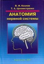 Анатомия нервной системы