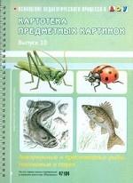 Картотека предметных картинок. Выпуск 10. Аквариумные и пресноводные рыбы. Насекомые и пауки