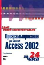 Освой самостоятельно программирование для Microsoft Access 2002 за 24