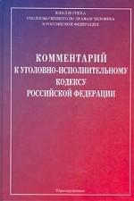 Комментарий к УИК РФ