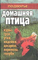 Домашняя птица. Куры, гуси, утки, индейки, цесарки, перепела и голуби