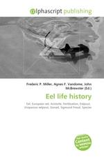 Eel life history