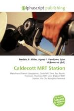 Caldecott MRT Station