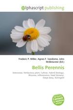 Bellis Perennis